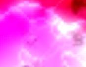 blome heidenreich zeltverleih